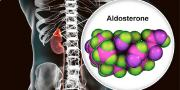 Aldosterone hormone fix for age-related hearing loss nears marketplace