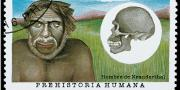 Did chronic ear infections help kill off the Neanderthal?